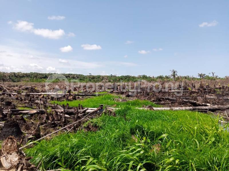 Serviced Residential Land Land for sale Afri Garden City Phase 2 Iju Ota By Covenant University Canaan Land Sango Ota Ado Odo/Ota Ogun - 1