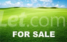 Land for sale 13 Ibeshe Abese Ewekoro Ogun - 3