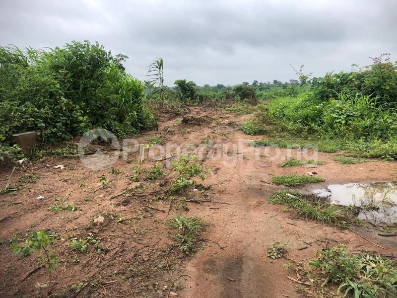 Land for sale Chesterville Park Phase 1, Camp Ologuneru Ibadan Oyo - 0