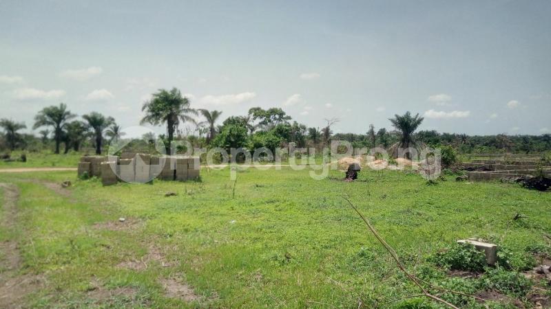 Land for sale Mawere Tapa Rd  Agric Ikorodu Lagos - 3