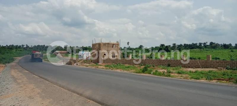 Residential Land for sale Alabata, 6 Minutes Drive From King's International College, Moniya Ibadan Oyo - 3