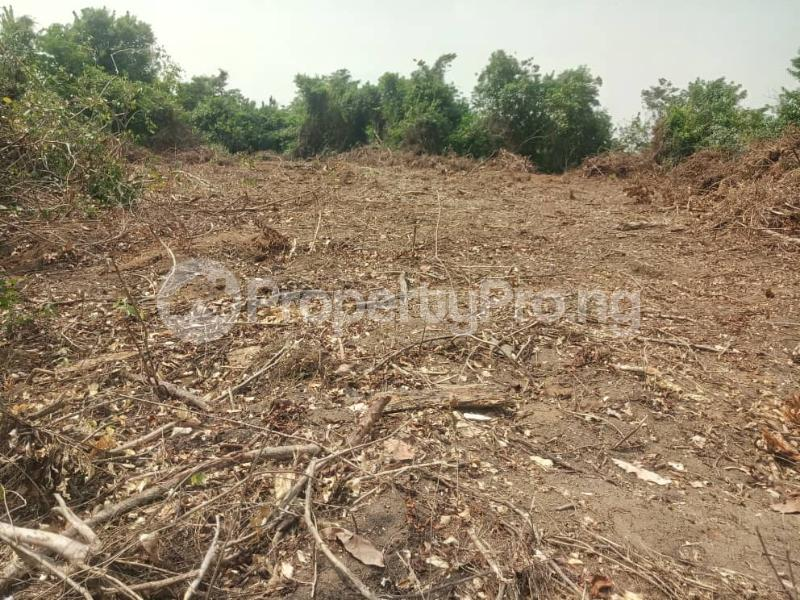 Serviced Residential Land Land for sale Directly Along Lekki Epe Express Epe Road Epe Lagos - 2