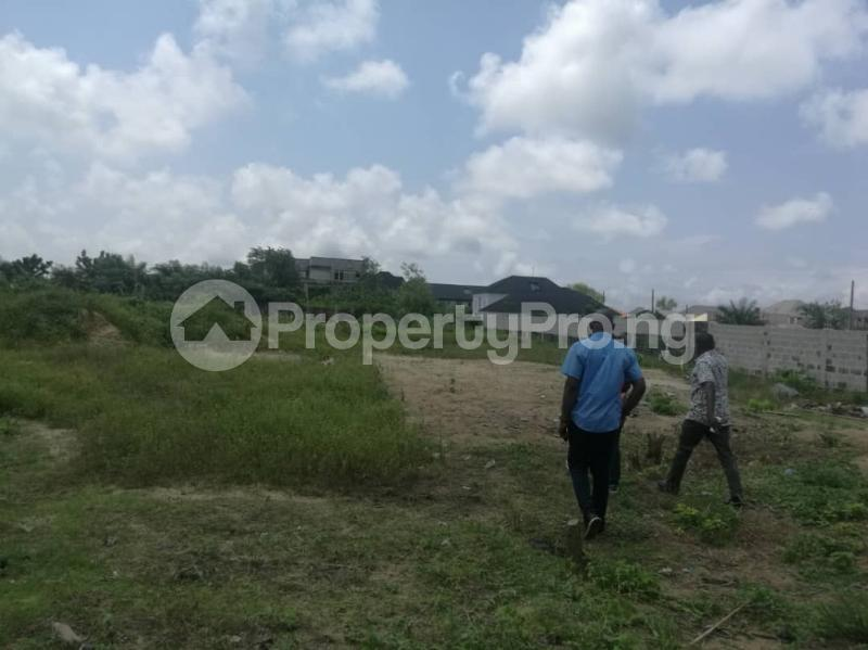 Mixed   Use Land Land for sale Immediate Turn Opposite Royal Palm Suite After Mayfair Garden Estate, Awoyaya Ajah Lagos - 6