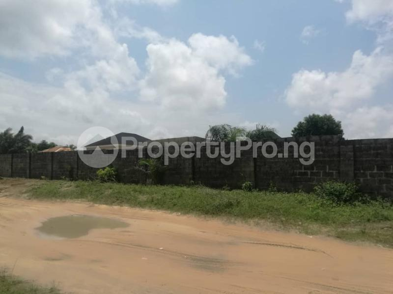 Mixed   Use Land Land for sale Immediate Turn Opposite Royal Palm Suite After Mayfair Garden Estate, Awoyaya Ajah Lagos - 4