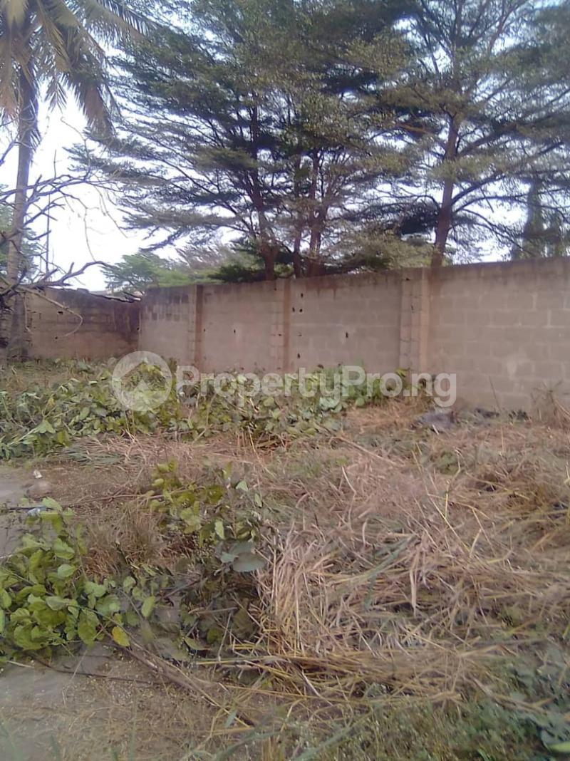 Commercial Land Land for sale Badore, lagos Ejigbo Lagos - 0