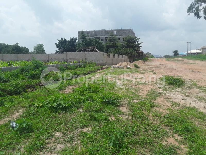 Residential Land Land for sale Dape, plot 817 Dape Abuja - 1
