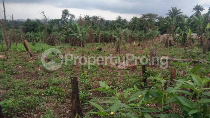 Land for sale New Ife Road Egbeda Oyo - 0