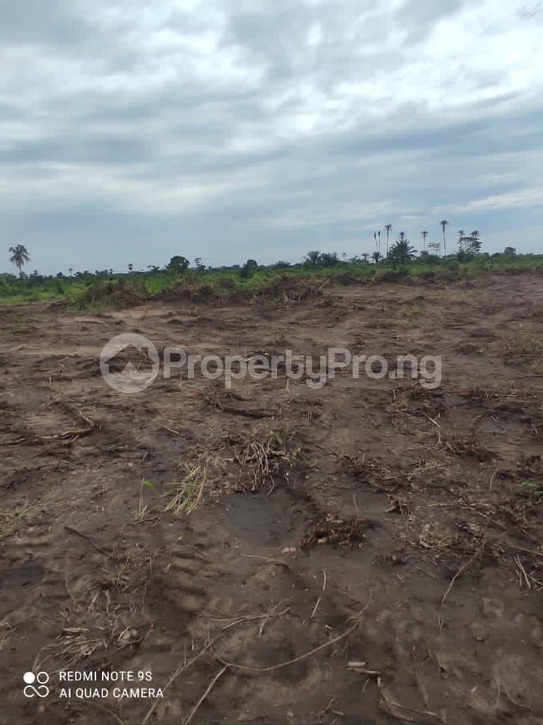 Residential Land for sale Uptown Bay, Ogun Water Side, Ode Omi. LaCampaigne Tropicana Ibeju-Lekki Lagos - 1