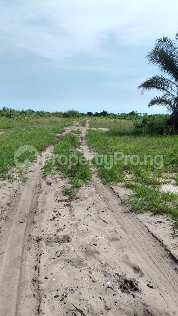 Residential Land for sale Uptown Bay, Ogun Water Side, Ode Omi. LaCampaigne Tropicana Ibeju-Lekki Lagos - 2