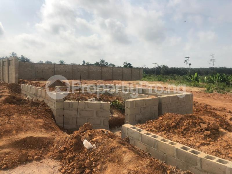 Serviced Residential Land Land for sale Ilara - On Same Road With Augustine University Epe Lagos - 2