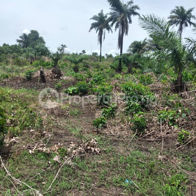 Mixed   Use Land for sale Igbonla Along Saint Augustine University Road Epe Lagos - 1