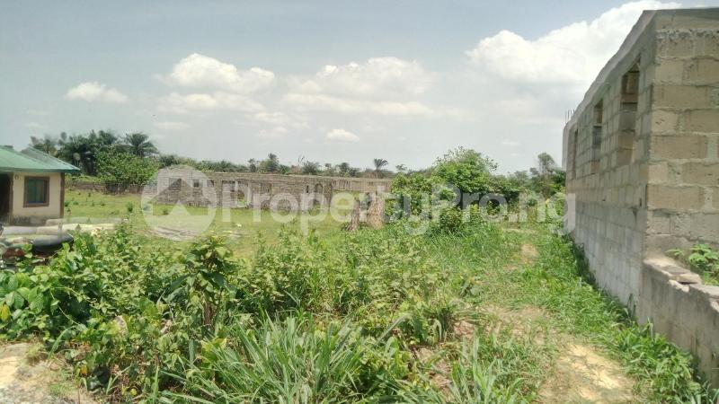 Land for sale Mawere Tapa Rd  Agric Ikorodu Lagos - 13