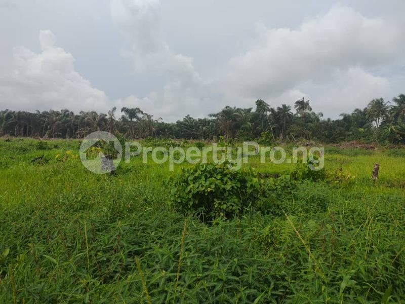 Residential Land for sale D'onyx Scheme 1, Igando Orudu. Eleko Ibeju-Lekki Lagos - 4