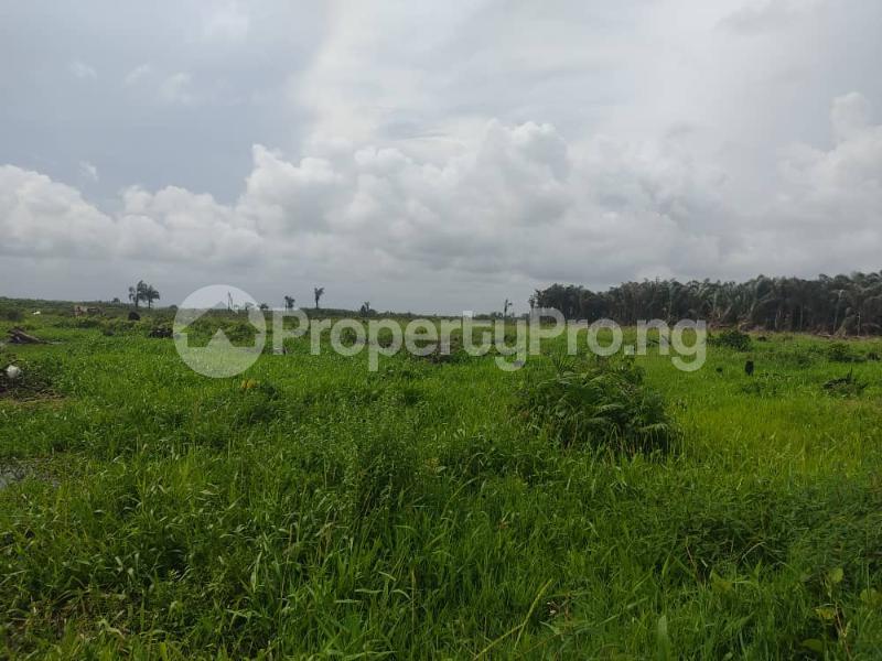 Residential Land for sale D'onyx Scheme 1, Igando Orudu. Eleko Ibeju-Lekki Lagos - 8