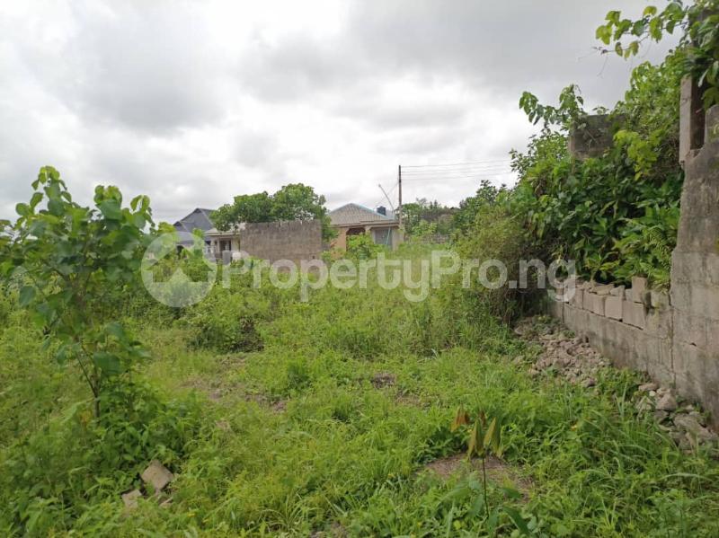 Land for sale Itele Ijebu Ogun - 6
