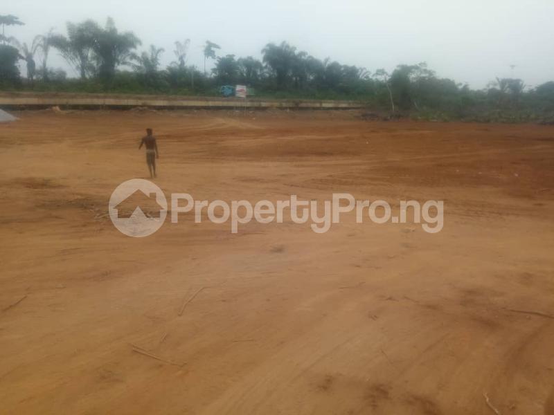 Mixed   Use Land Land for sale Medorf Luxury Estate Itokin Road  Epe Road Epe Lagos - 14