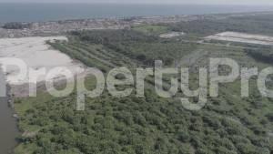 Mixed   Use Land for sale Located At Iberekodo Eleko Ibeju Lekki Lagos Nigeria Iberekodo Ibeju-Lekki Lagos - 3