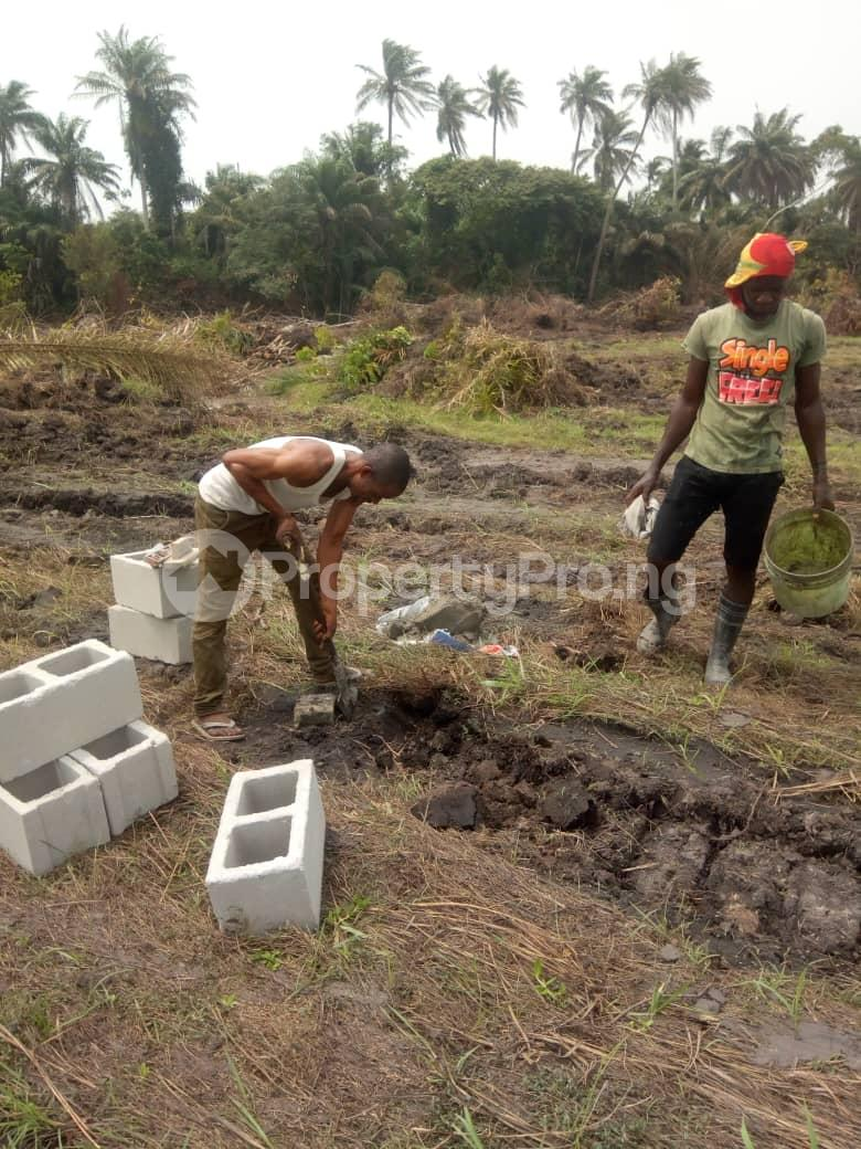 Residential Land Land for sale OMUANWA COMMUNITY, IKWERE L. G. A, RIVER STATE, PORTHARCOURT  Biase Cross River - 1