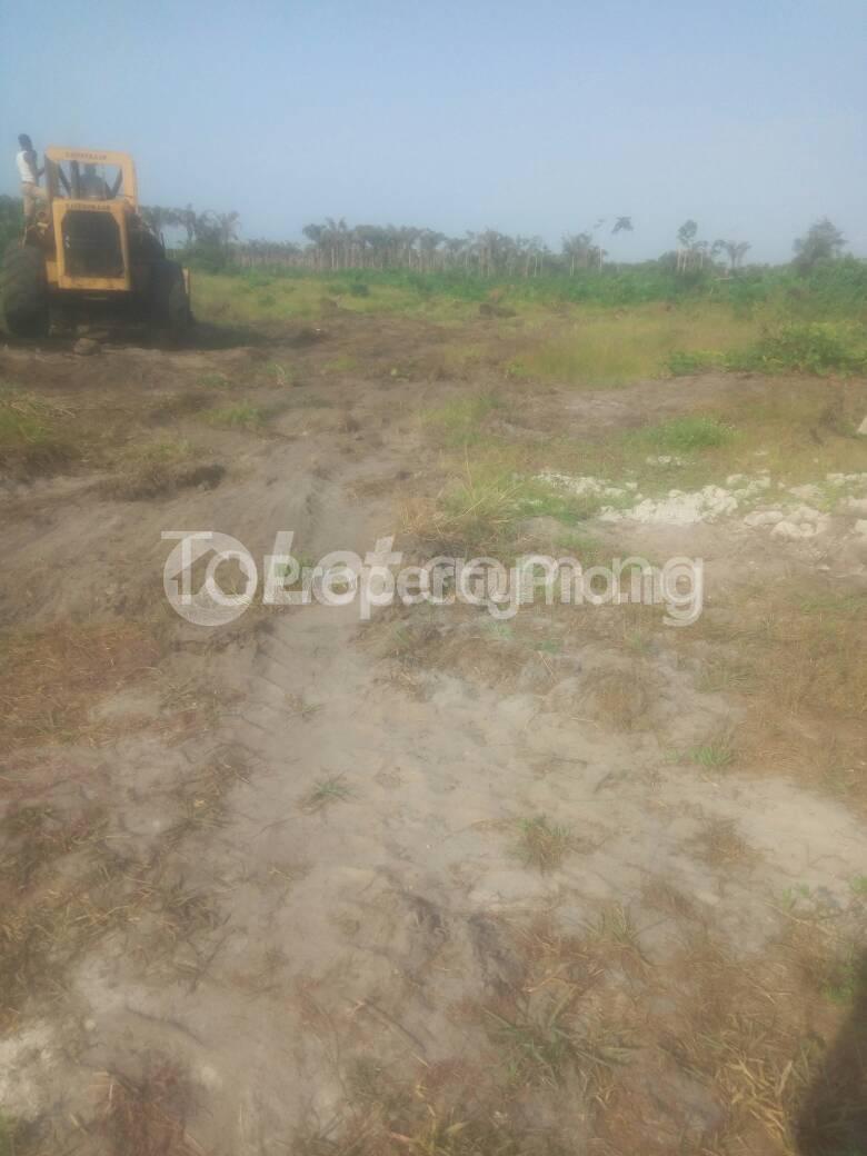 Mixed   Use Land for sale Locsted Behind Amen Estate Phase 1, Kayetoro Eleko Ibeju Lekki Lagos Eleko Ibeju-Lekki Lagos - 2