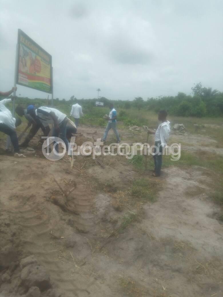 Mixed   Use Land for sale Locsted Behind Amen Estate Phase 1, Kayetoro Eleko Ibeju Lekki Lagos Eleko Ibeju-Lekki Lagos - 3