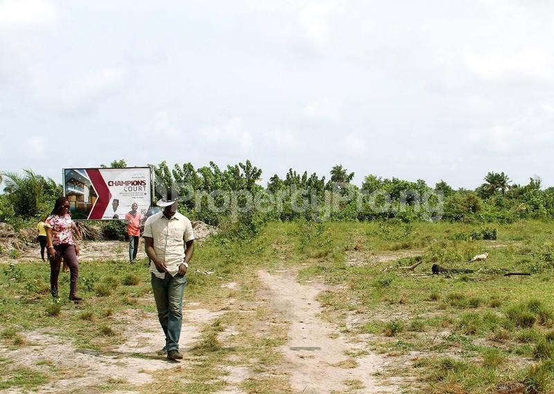 Residential Land for sale Located Behind Amen Phase 1 Kayetoro Eleko Ibeju Lekki Lagos Eleko Ibeju-Lekki Lagos - 2