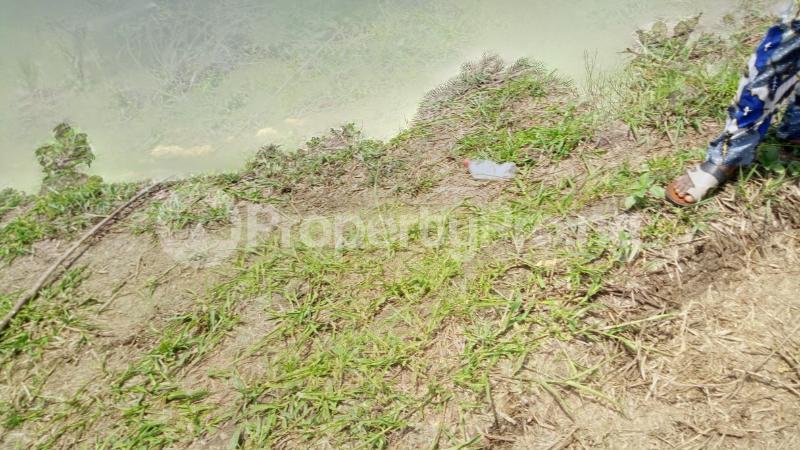 Land for sale Mawere Tapa Rd  Agric Ikorodu Lagos - 8