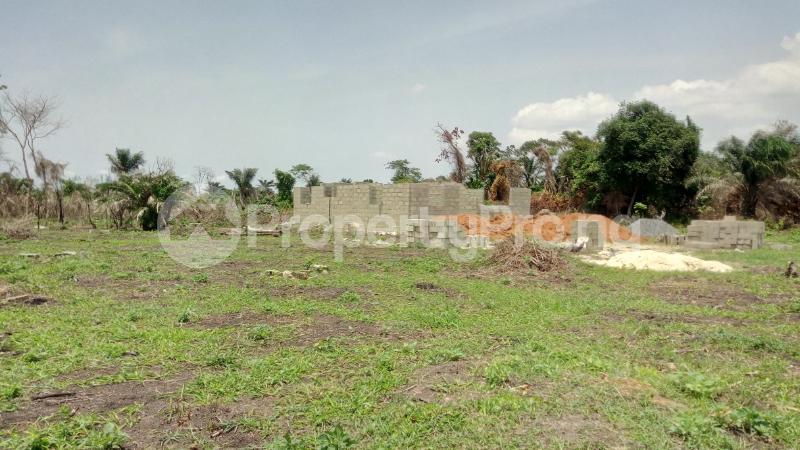 Land for sale Mawere Tapa Rd  Agric Ikorodu Lagos - 2