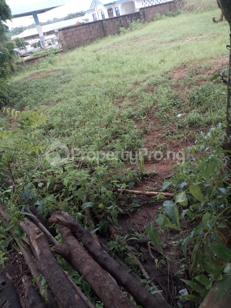 Mixed   Use Land Land for sale Along west end, Malete  Moro Kwara - 0