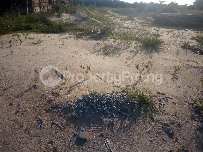 Residential Land Land for sale Nasco Estate Satellite Town Amuwo Odofin Lagos - 1
