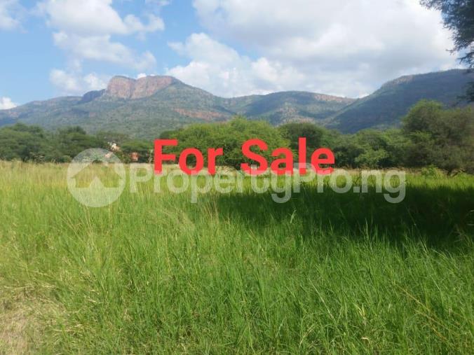 Mixed   Use Land Land for sale Near Eleko Beach Junction. Eleko Ibeju-Lekki Lagos - 0