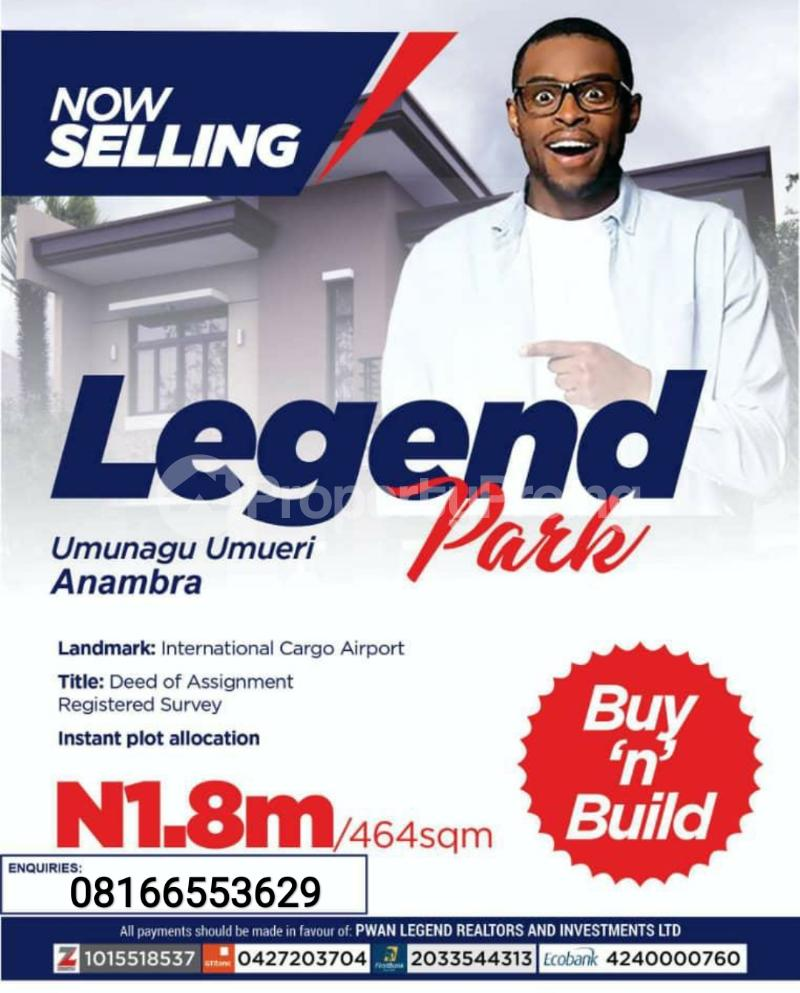 Mixed   Use Land Land for sale Anambra East Anambra - 0