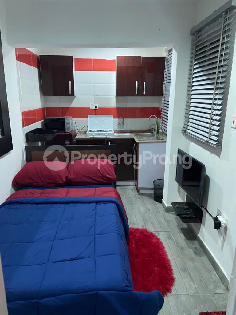 1 bedroom mini flat  Studio Apartment Flat / Apartment for shortlet FREEDOM WAY LEKKI PHASE 1 Lekki Phase 1 Lekki Lagos - 7