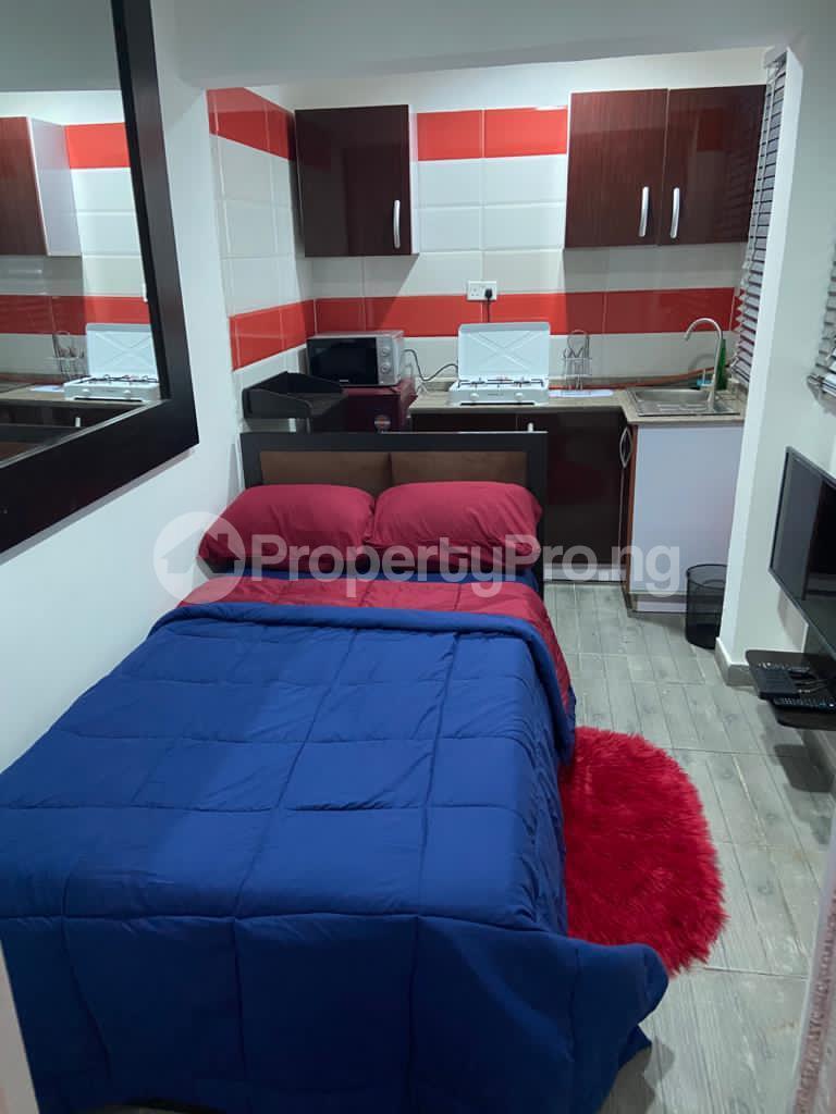 1 bedroom mini flat  Studio Apartment Flat / Apartment for shortlet FREEDOM WAY LEKKI PHASE 1 Lekki Phase 1 Lekki Lagos - 6