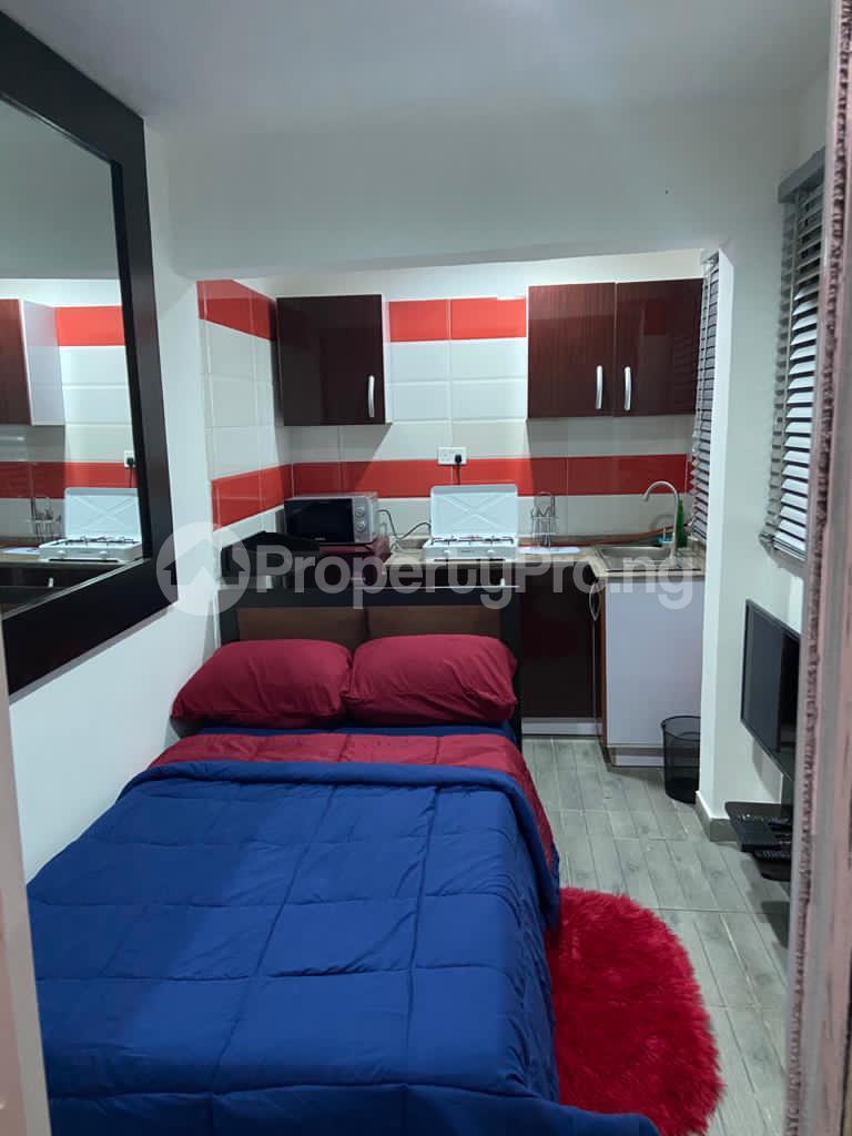 1 bedroom mini flat  Studio Apartment Flat / Apartment for shortlet FREEDOM WAY LEKKI PHASE 1 Lekki Phase 1 Lekki Lagos - 3