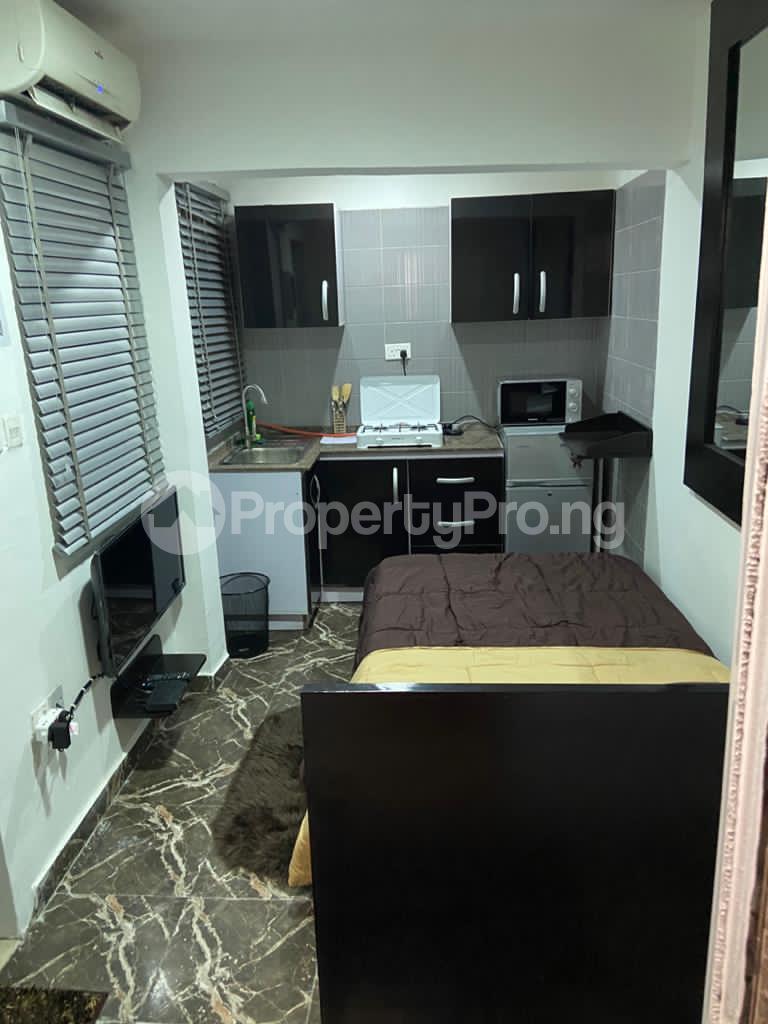 1 bedroom mini flat  Studio Apartment Flat / Apartment for shortlet FREEDOM WAY LEKKI PHASE 1 Lekki Phase 1 Lekki Lagos - 2
