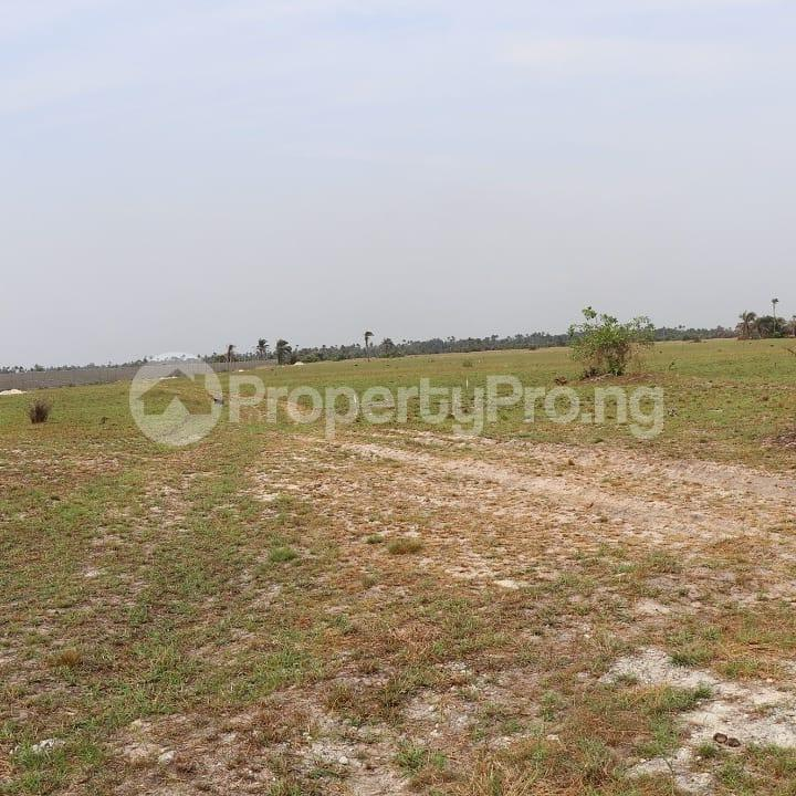 Land for sale LaCampaigne Tropicana Ibeju-Lekki Lagos - 23