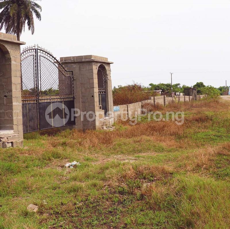Mixed   Use Land Land for sale Free Trade Zone Ibeju-Lekki Lagos - 0