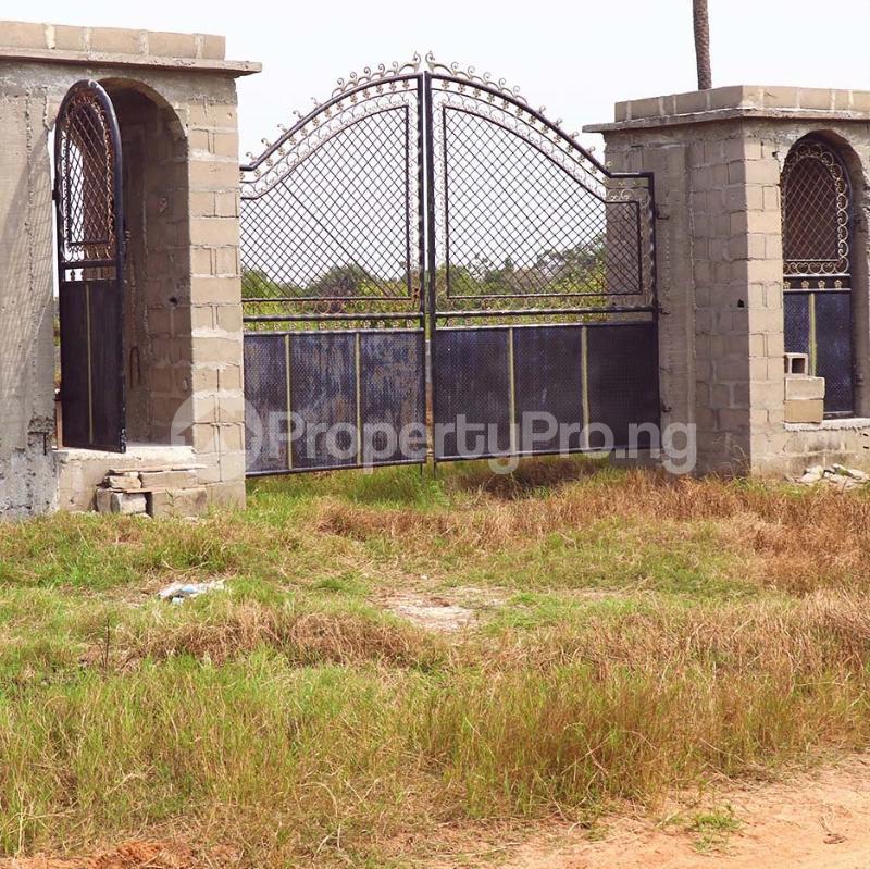 Mixed   Use Land Land for sale Free Trade Zone Ibeju-Lekki Lagos - 1