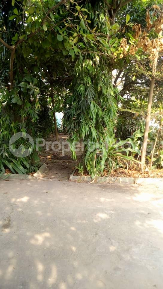 Office Space Commercial Property for sale 6th Avenue Festac Amuwo Odofin Lagos - 10