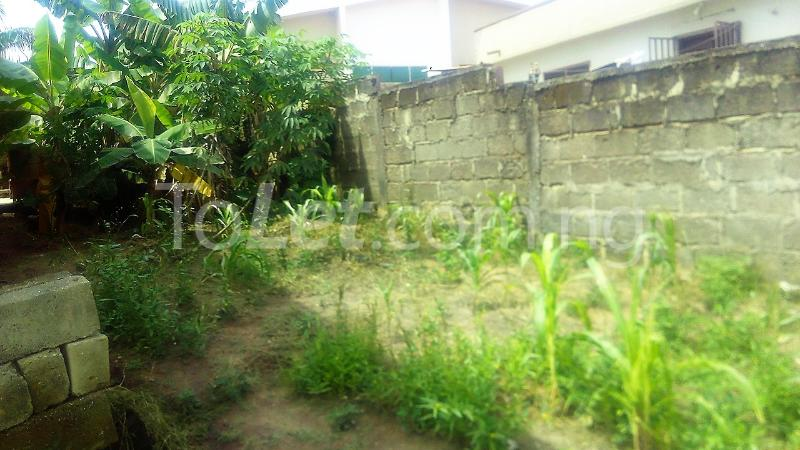 Land for sale Line 1 Ife Central Osun - 0