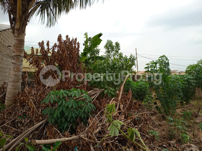 Mixed   Use Land Land for sale Shote road Magboro Obafemi Owode Ogun - 5