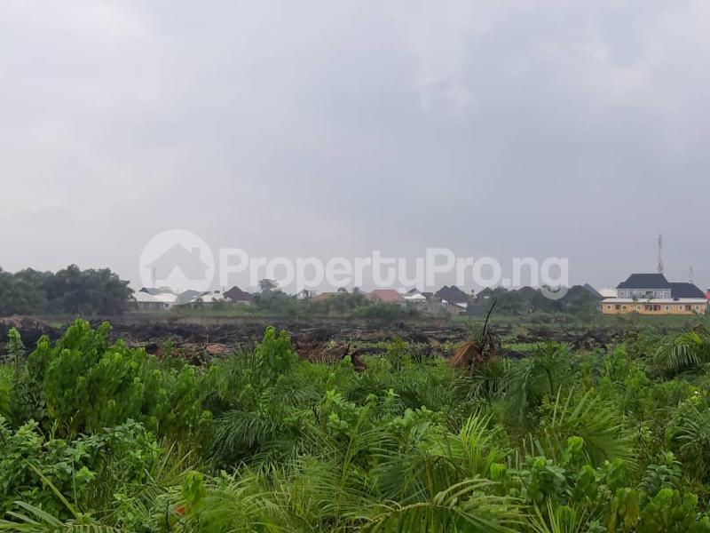 Serviced Residential Land Land for sale Treasure Island Estate, Adjacent Shoprite, Sangotedo Ajah Lagos - 2