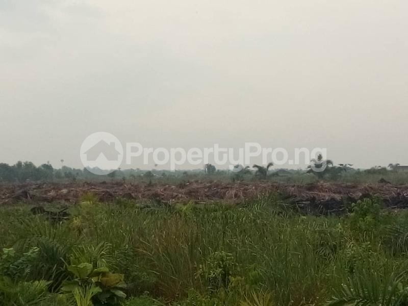 Serviced Residential Land Land for sale Treasure Island Estate, Adjacent Shoprite, Sangotedo Ajah Lagos - 3