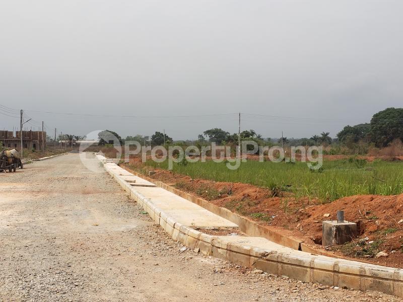 Residential Land Land for sale Palm Springs Oasis Estate Off Innoson company,Emene Industrial/Residential  Enugu Enugu - 4