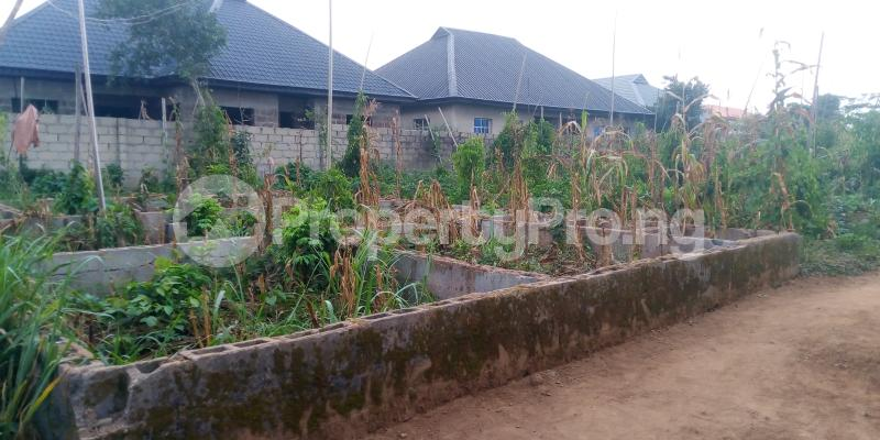 Residential Land Land for sale Adamo Ikorodu  Maya Ikorodu Lagos - 2