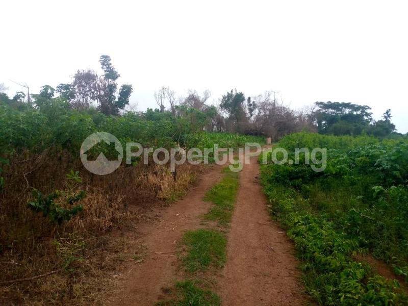 Mixed   Use Land for sale Ibadan Oyo - 0