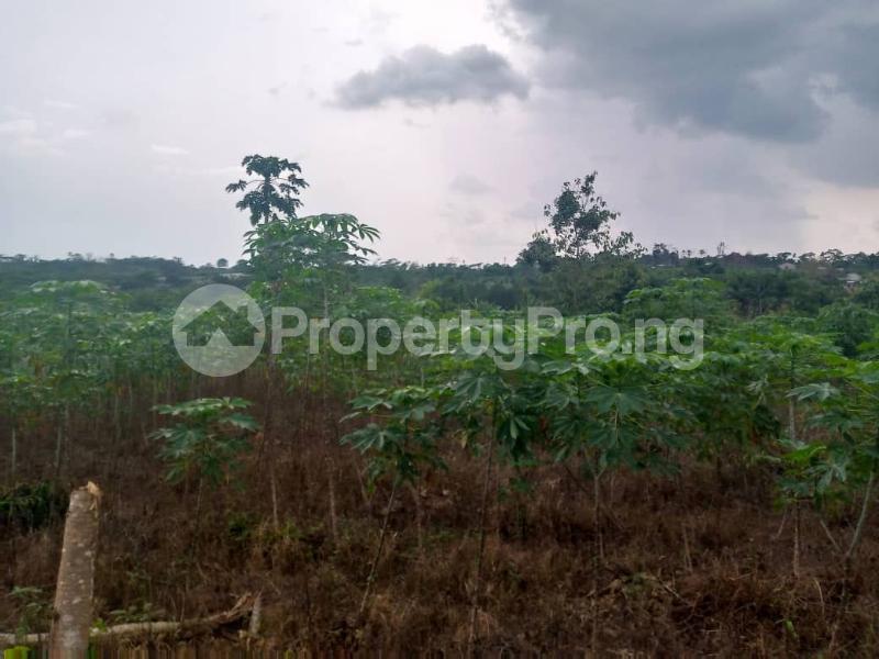 Mixed   Use Land for sale Ibadan Oyo - 2