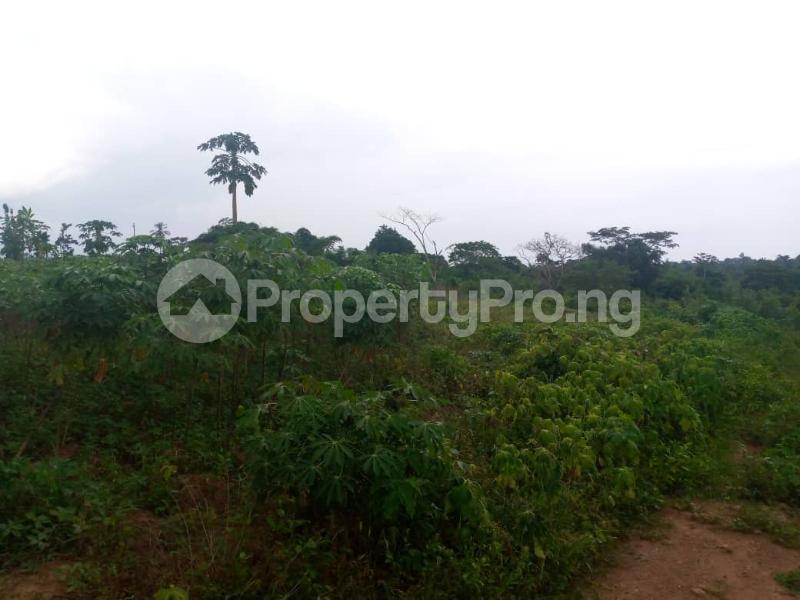 Mixed   Use Land for sale Ibadan Oyo - 1