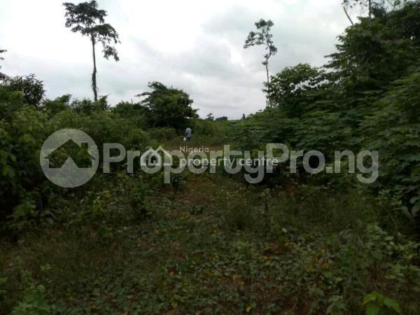 Land for sale Benin Auchi Road, Oluku Bypass Ute Community, Ward 6 Uhunmwode Lga, Uhunmwonde Uhunmwonde Edo - 1