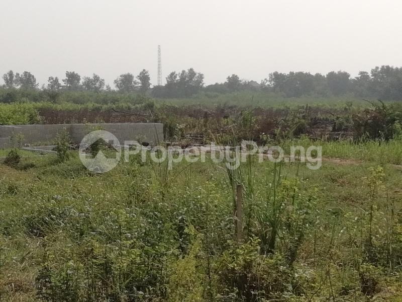 Mixed   Use Land Land for sale off Azagba Ogwashi-Ukwu Polytechnic Road Aniocha South Delta - 1